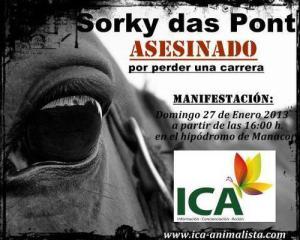 Sorky1